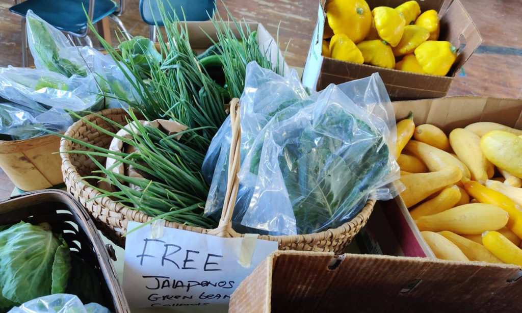 Free vegetables!