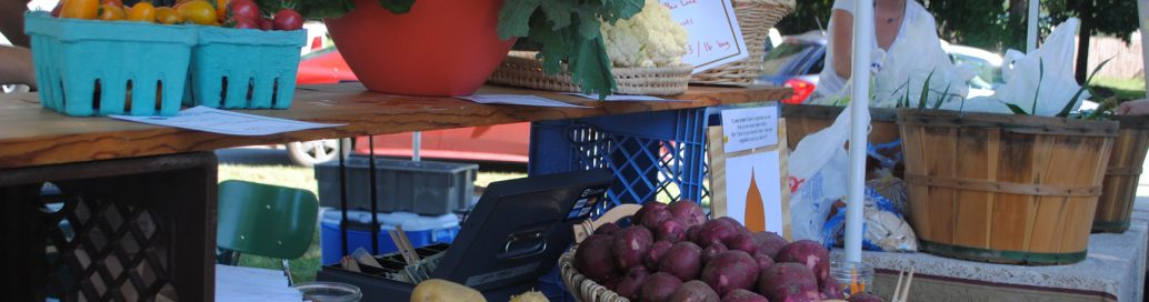 Delicious options at Future Fest Farmers' Market and food vendors