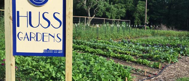 Hussagram: New garden sign